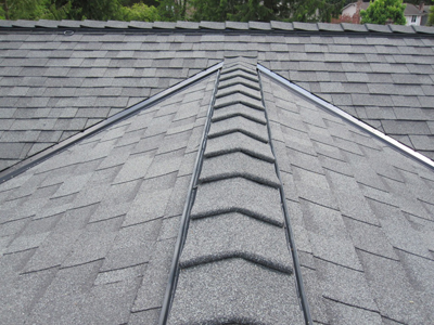 Dondy S Roofing Roof Repair Amp Maintenance Services